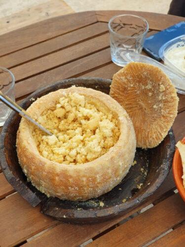 ウジ虫の入ったサルデーニャチーズ食べれますか?